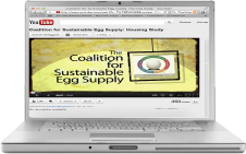 youtube Coalition For Sustainable Egg Supply